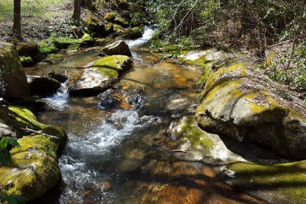 Blue Ridge property (110)