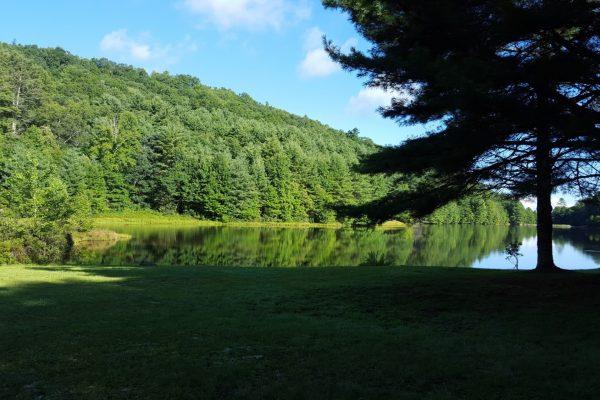 Blue Ridge property (113)