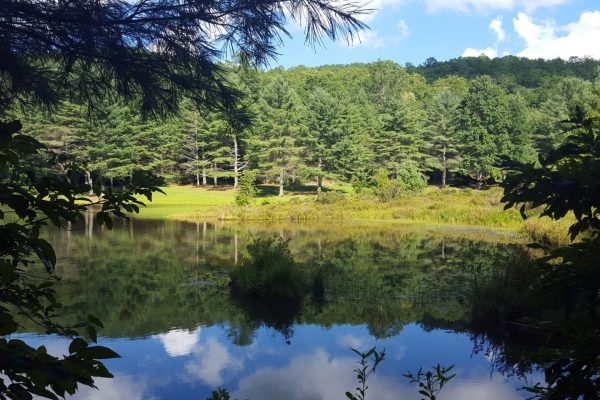 Blue Ridge property (114)