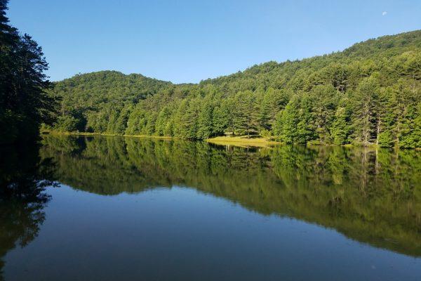 Blue Ridge property (117)