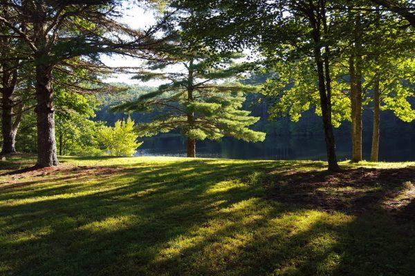 Blue Ridge property (13)