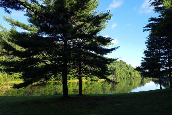 Blue Ridge property (14)
