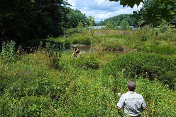 Blue Ridge property (16)
