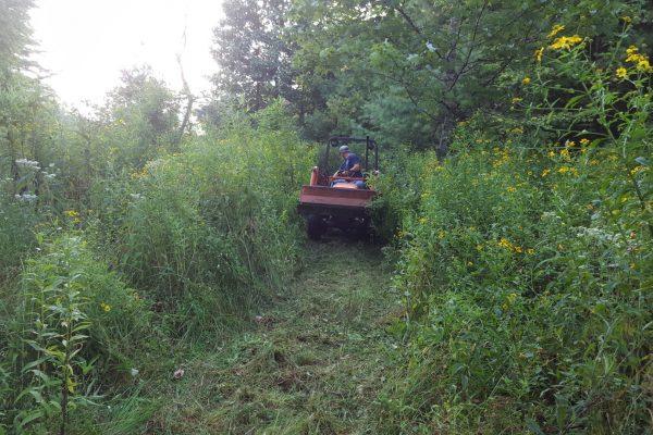 Blue Ridge property (18)