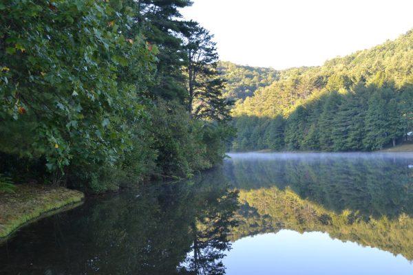Blue Ridge property (27)