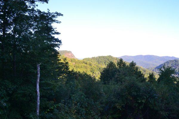 Blue Ridge property (29)