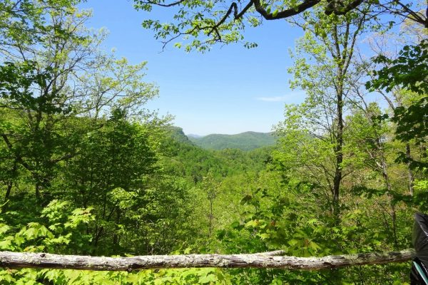 Blue Ridge property (32)