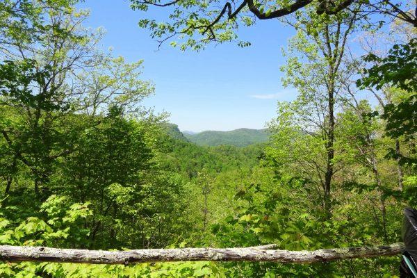 Blue Ridge property (32)