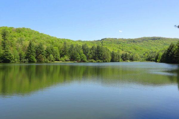 Blue Ridge property (33)