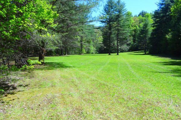 Blue Ridge property (34)