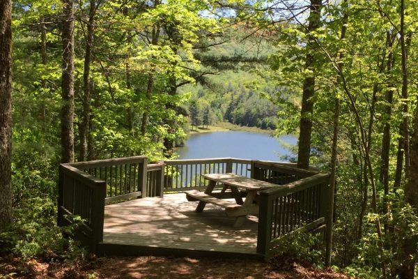 Blue Ridge property (42)