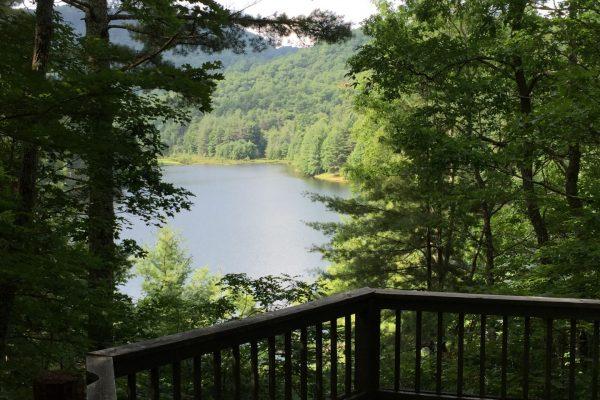 Blue Ridge property (45)