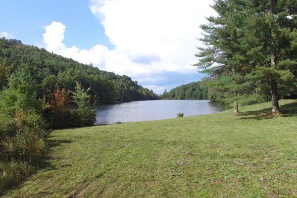 Blue Ridge property (53)
