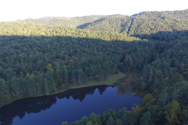 Blue Ridge property (54)