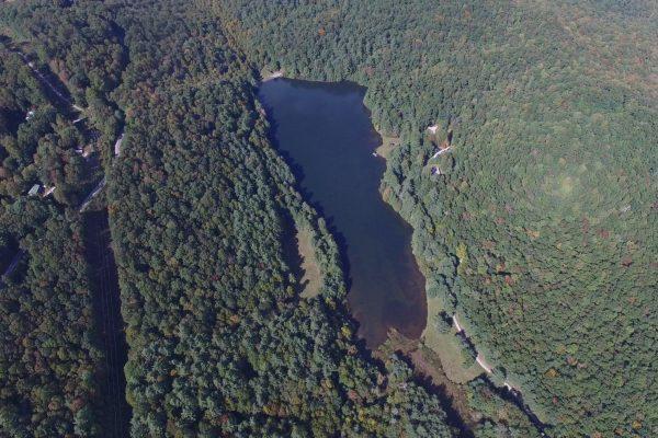 Blue Ridge property (57)