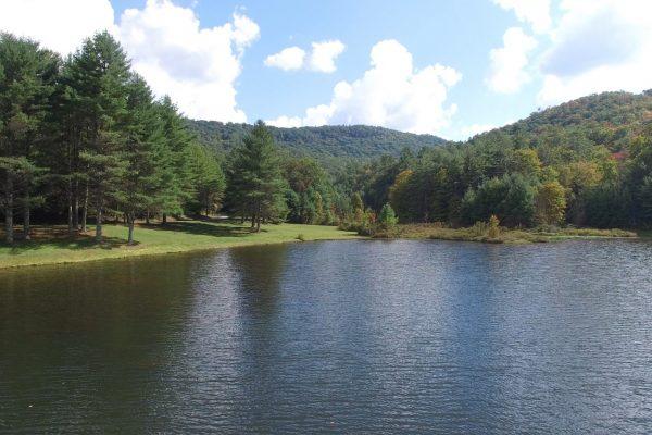 Blue Ridge property (58)