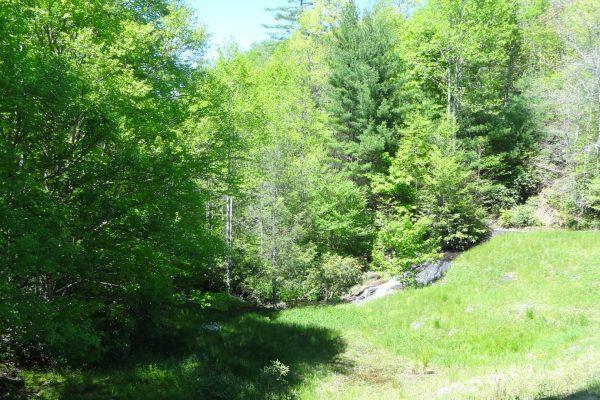 Blue Ridge property (63)