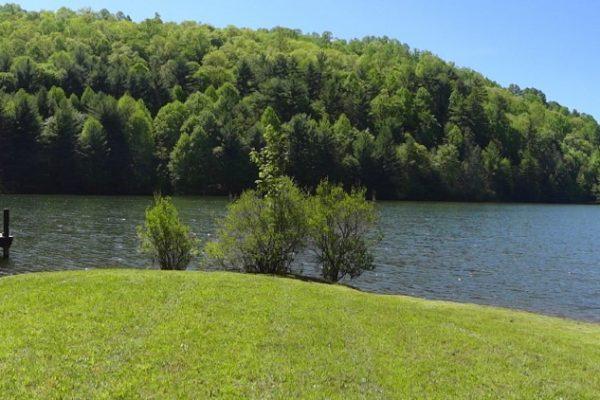 Blue Ridge property (66)