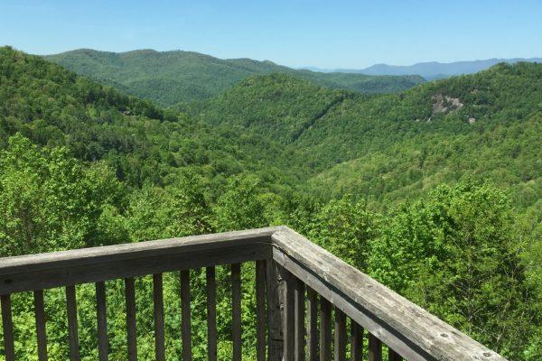Blue Ridge property (74)