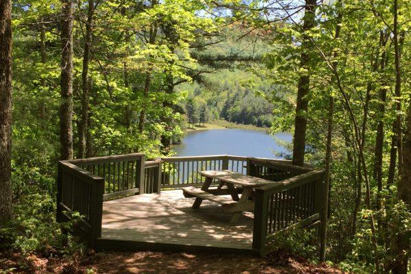 Blue Ridge property (75)