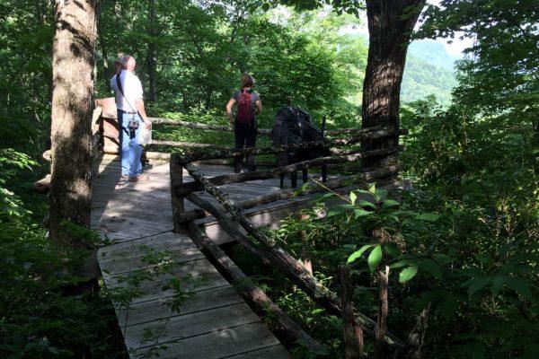 Blue Ridge property (77)