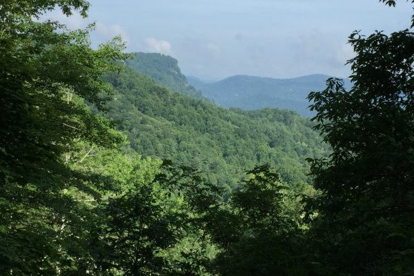 Blue Ridge property (78)