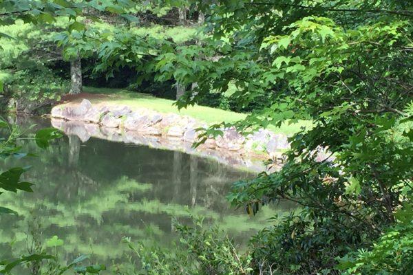 Blue Ridge property (81)