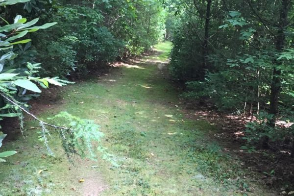 Blue Ridge property (83)